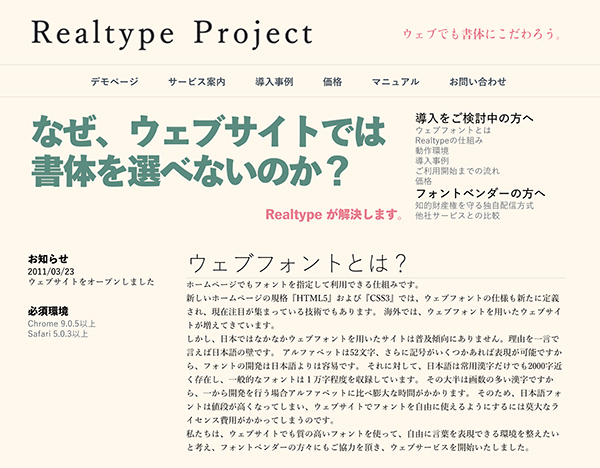 Realtype Project
